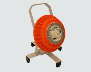 slideP10158770
